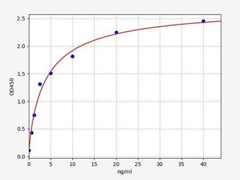 Porcine ELISA Kits Porcine HER2Epidermal growth factor receptor 2 ELISA Kit