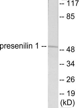 Cell Death Presenilin 1 Colorimetric Cell-Based ELISA