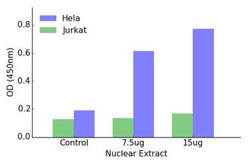 ELF1 Transcription Factor Activity Assay