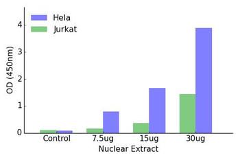 GATA3 Transcription Factor Activity Assay
