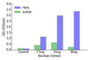 HIF-1alpha Transcription Factor Activity Assay