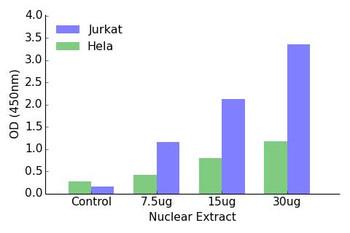HOXA1 Transcription Factor Activity Assay