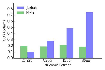 HOXA11/D11 Transcription Factor Activity Assay
