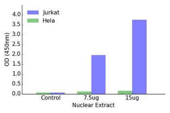 IKZF2 Transcription Factor Activity Assay