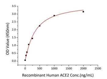 Recombinant SARS-CoV-2 Spike S1 Protein
