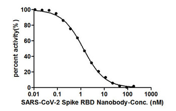 SARS-CoV-2 Spike Protein RBD Nanobody A1