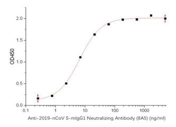 SARS-CoV-2 Spike-mIgG1 Neutralizing Antibody