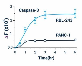 Cell Health Assays Caspase 3/7 Assay Kit Fluorometric BA0020