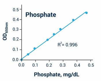 Cell Biology Assays Malachite Green Phosphate Assay Kit BA0048