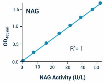 Cell Biology Assays Beta-N-Acetylglucosaminidase Activity Assay Kit BA0053