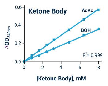 Metabolism Assays Beta Hydroxybutyrate Assay Kit BA0124
