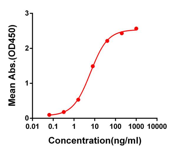 Anti-SARS-CoV-2 RBD antibody DM55 Rabbit mAb HDAB0045