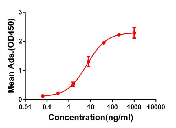 Anti-CD28 antibody DM63 Rabbit mAb HDAB0053