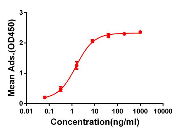 Anti-CD28 antibody DM64 Rabbit mAb HDAB0054