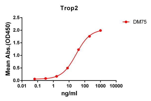 Anti-Trop2 antibody DM75 Rabbit mAb HDAB0062