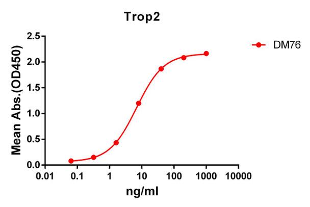Anti-Trop2 antibody DM76 Rabbit mAb HDAB0063