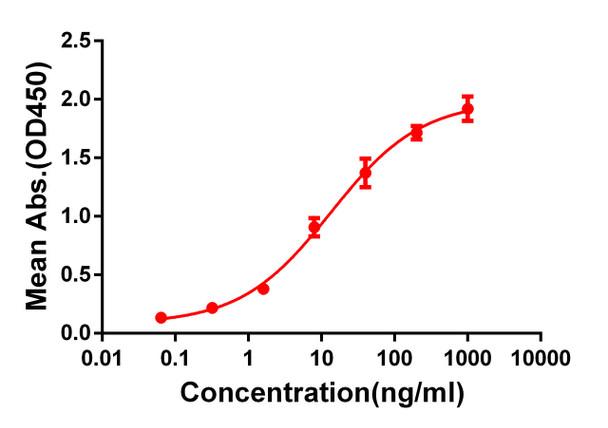 Anti-CD33 antibody DM77 Rabbit mAb HDAB0064