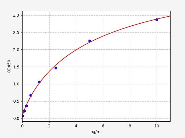 Rat Signaling ELISA Kits 5 Rat ODC1 Ornithine Decarboxylase ELISA Kit RTFI01431