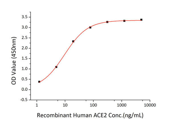 Recombinant SARS-CoV-2 Spike RBD Protein