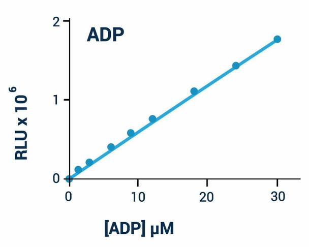 Signaling Pathway Assays ADP Assay Kit Luminescent BA0072