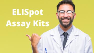 ELISpot Assay Kits