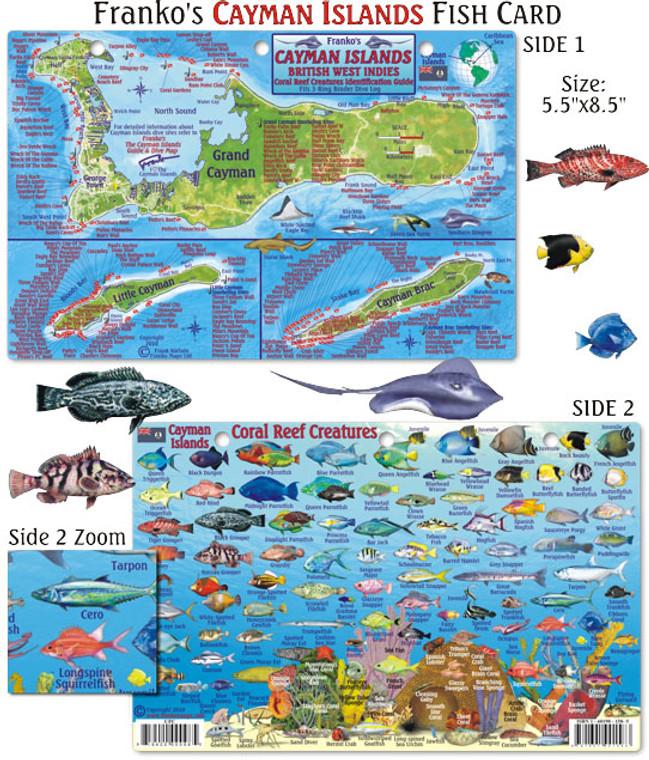 Franko Maps Cayman Islands Reef Creatures Fish ID