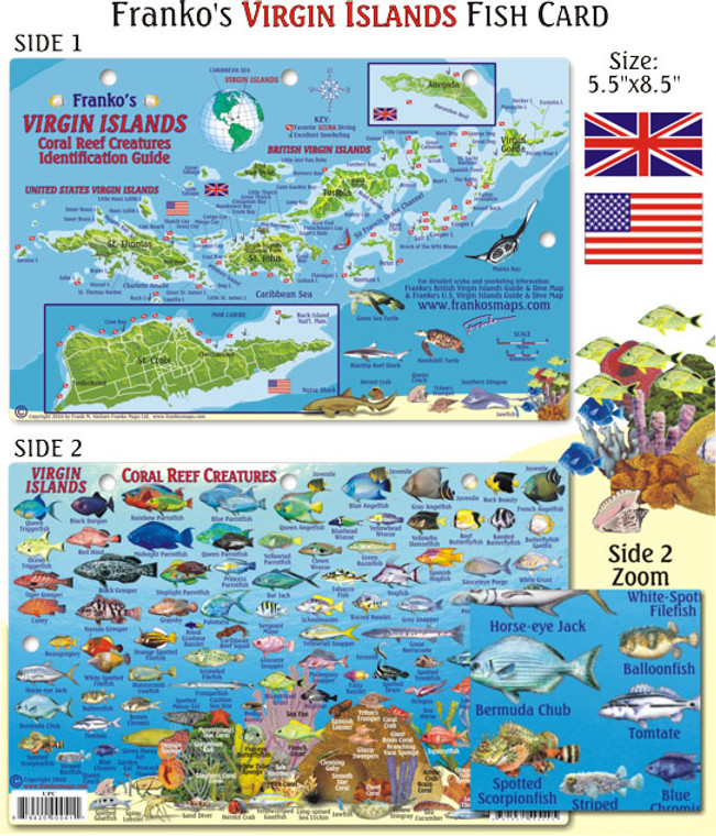 Franko Maps Virgin Islands Fish ID for Scuba Divers and Snorkelers