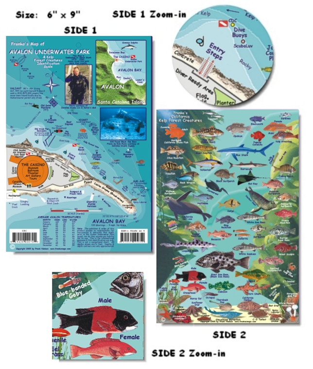 Franko Maps Avalon Underwater Park Fish ID for Scuba Divers and Snorkelers