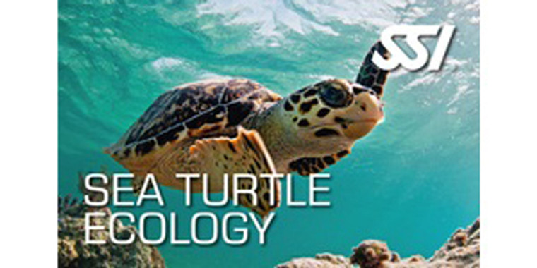 SSI Sea Turtle Ecology Kit