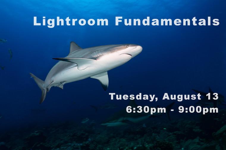 Introduction to Adobe Lightroom Fundamentals
