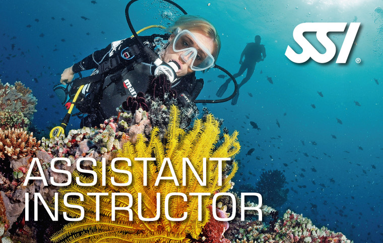 SSI Assistant Instructor Course