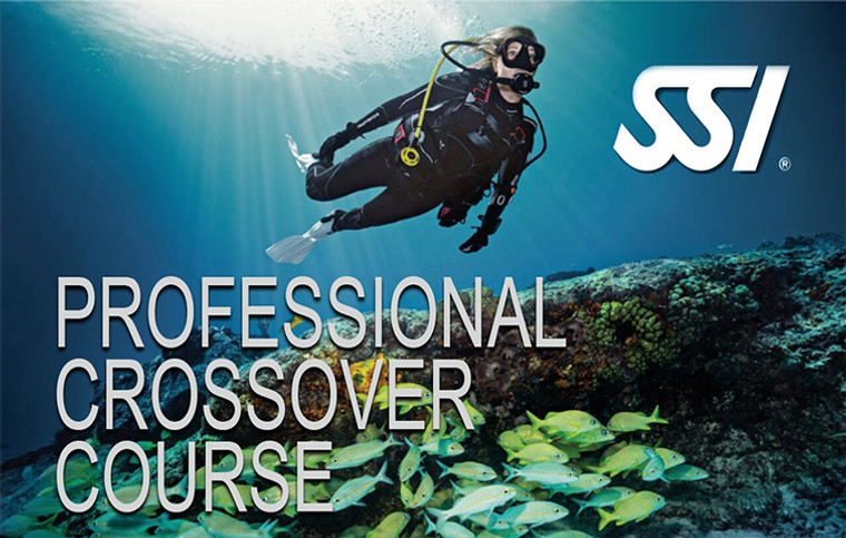SSI Professional Crossover Course