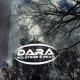 Dara Holsters & Gear Logo Decal