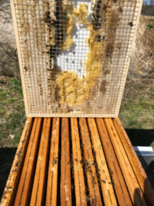 DRB Winter Feed Board for winter feeding of beehives, 8 frame
