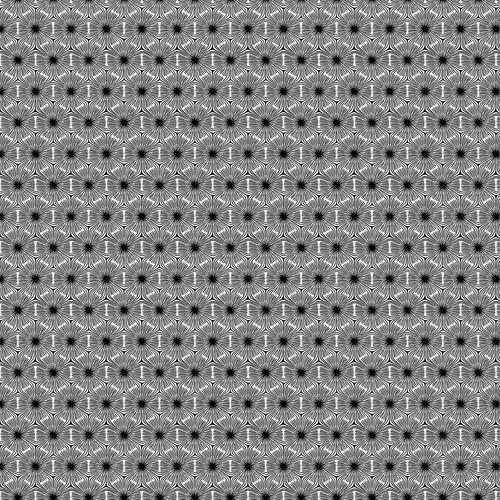 Simply Neutral 2 White Black Hexagon Geo