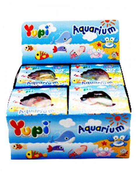 yupi aquarium display box