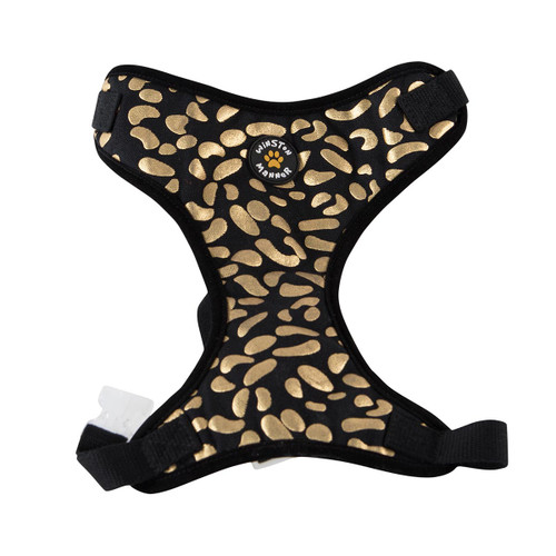 Winston Manner Disco Dog Harness
