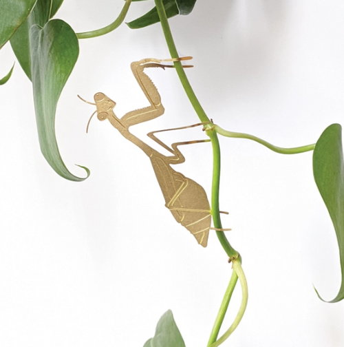Plant Animal Houseplant Decoration - Praying Mantis