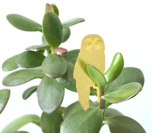 Plant Animal Houseplant Decoration - Owl
