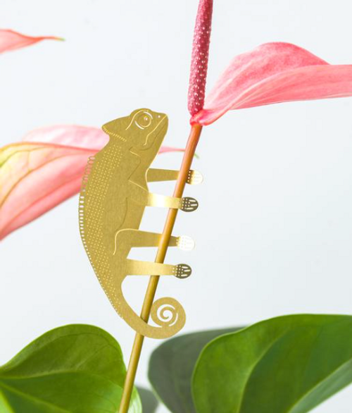 Plant Animal Houseplant Decoration - Chameleon