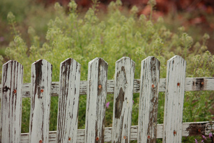 How To Care For Your Wooden Fence
