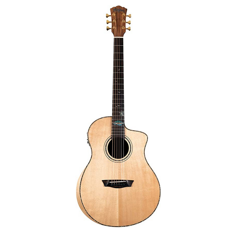 Washburn 6 String Acoustic-Electric Guitar, Right (BTSC56SCE-D)