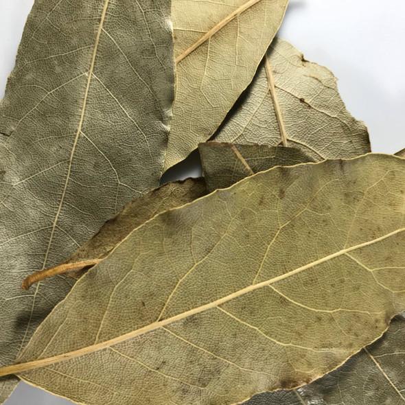 Bay Leaf, Organic - Hoja de Laurel, Organico