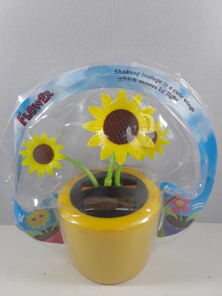 Solar Flower, Sunflower - Flor Solar, Girasol