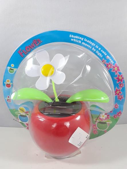Solar Flower, White - Flor Solar, Blanca