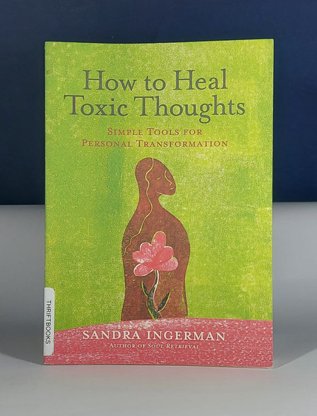 How to Heal Toxic Thoughts - Sandra Ingerman