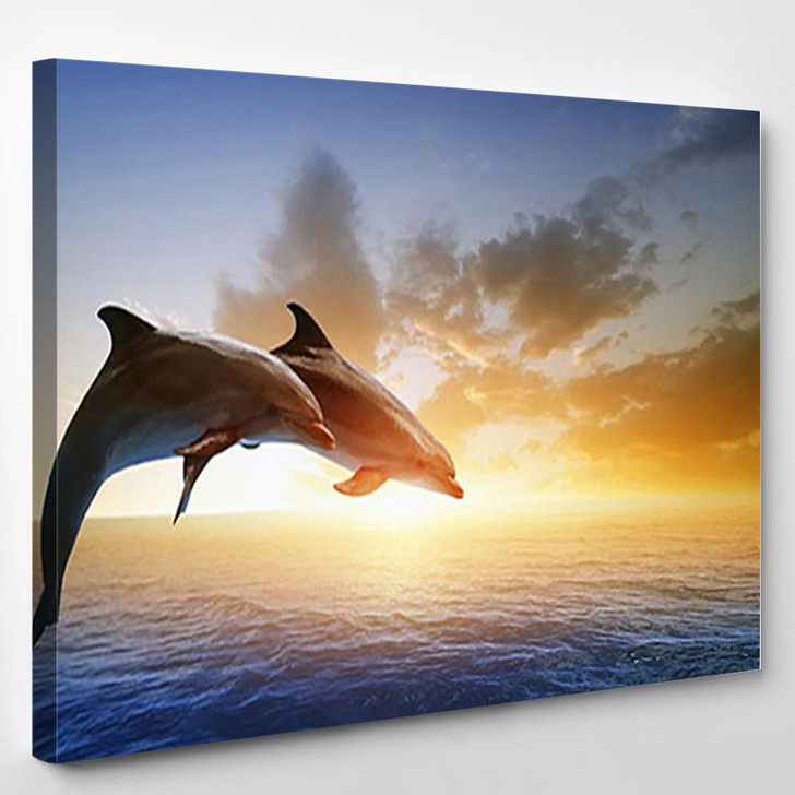 Jumping Dolphins 20 - Animal Canvas Wall Decor