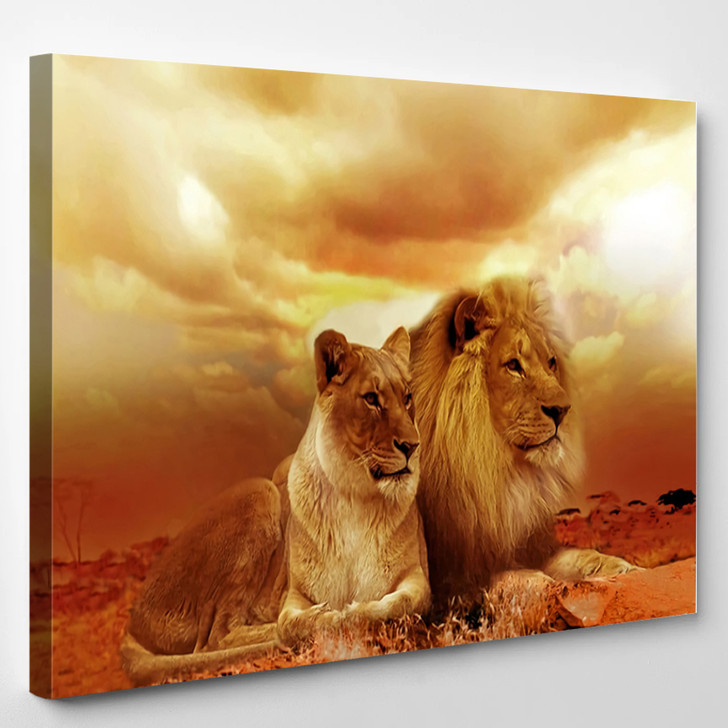Lion And Lioness 2 - Animal Canvas Wall Decor