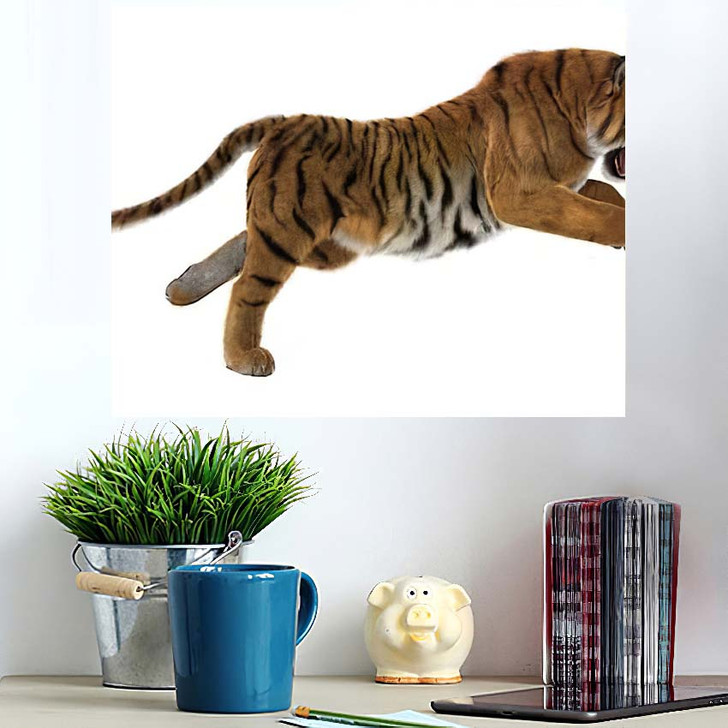3D Digital Render Hunting Big Cat - White Tiger Animals Wall Art Poster