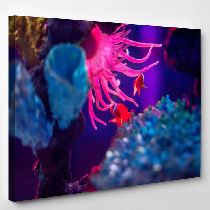 3D Render Illustration Colorful Bacteria - Canvas Wall Decor